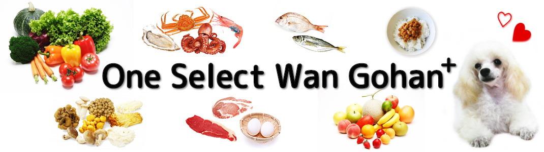 One Select Wan Gohan +