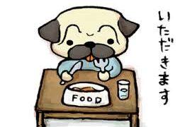 ☆1日の食事の回数とメインはどっち?